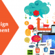 Affordable Webite Design and Development Services