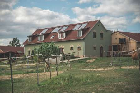 Farm is for sale in Kovagotottos