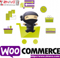Best Woo Commerce Development Services