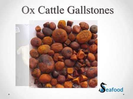 OX AND CATTLE GALLSTONES FOR SALE