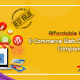 Affordable E-commerce Website Design and Development Services